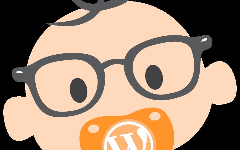 Rédacteur spécialisé WordPress